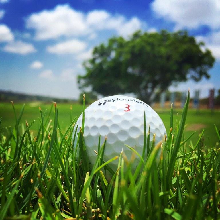 כדור גולף על הדשא