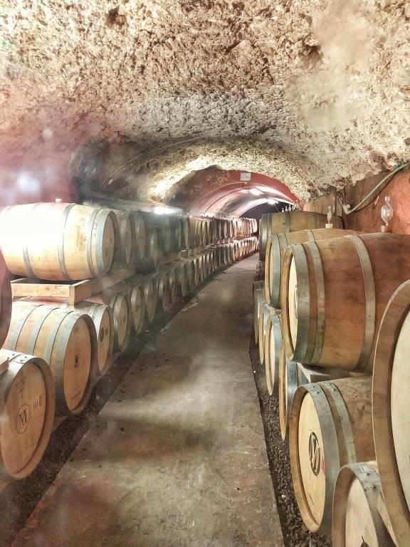 יינות בתוך מערה