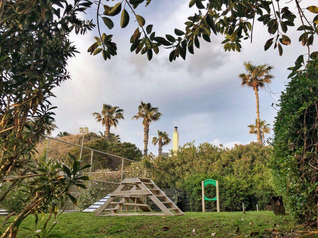 פארק כלבים במלון אלמירה בפאפוס