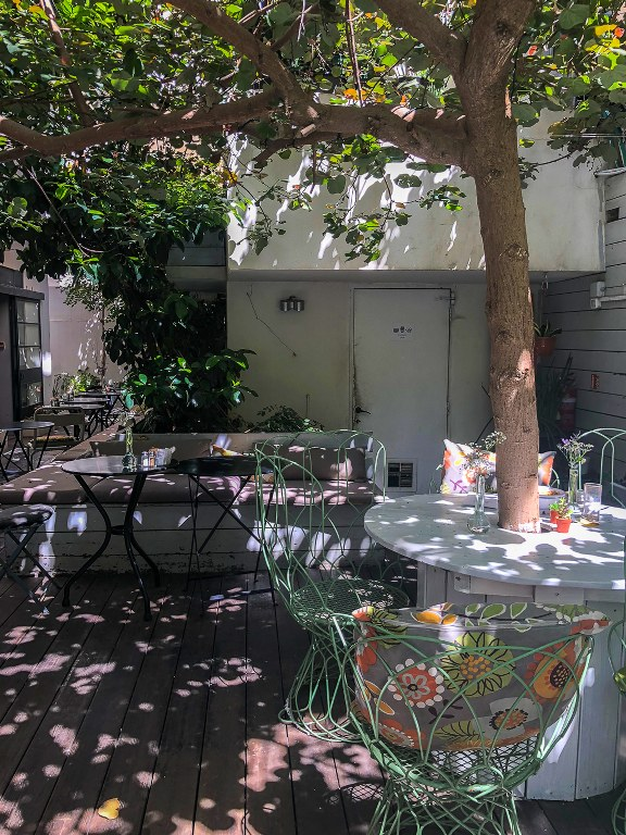 הגינה של ג'ונסי גרדנר