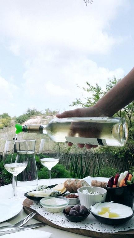 טעימת יינות יקב קדמא