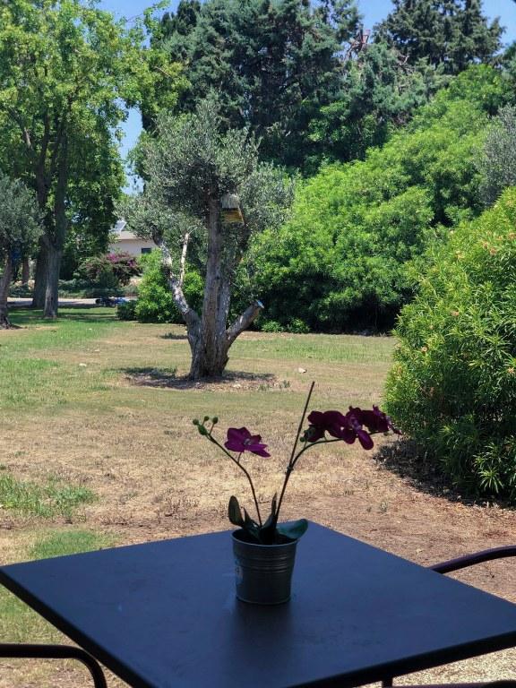פינת ישיבה מול מדשאת קיבוץ שמרת