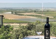 בקבוק יין של יקב בזק מול נוף לכרמי יוסף