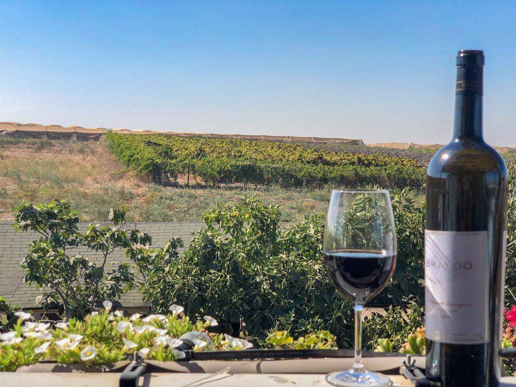 כוס יין ביקב ברבדו מול נוף לכרמים