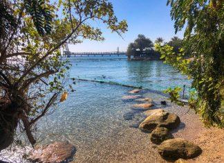 החוף של ריף הדולפינים באילת