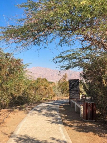 שביל הליכה בפארק הצפרות באילת