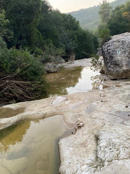 גב מים בנחל אלון